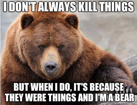 Bear-Meme-19